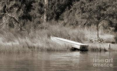 Photograph - In The Marsh by Benanne Stiens