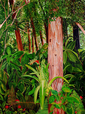 Maureen Painting - In The Miccosukee Forest by Maureen Piccirillo