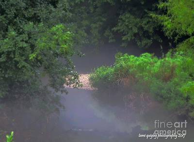 Photograph - In The Mist Of A Summer Evening by Tami Quigley