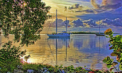 Photograph - In The Morning Light by HH Photography of Florida