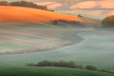Moravia Photograph - In The Morning Mist by Piotr Krol (bax)