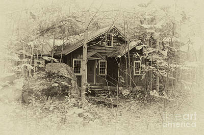 Abandoned Elkmont Wall Art - Photograph - In The Past by Barbara Rabek
