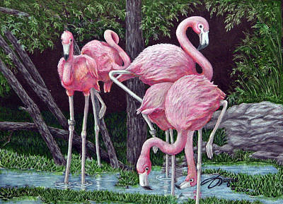 Fuqua - Artwork Drawing - In The Pink by Beverly Fuqua
