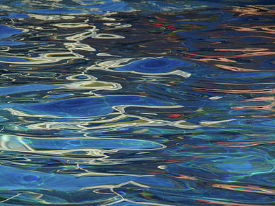 In The Pool Art Print