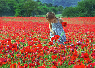 Photograph - In The Poppy Field by Keith Armstrong