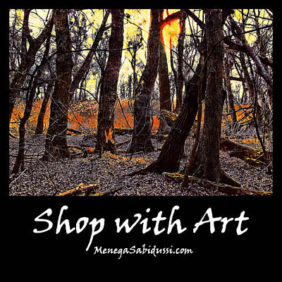 Painting - In The Prater Woods - Shop With Art by Menega Sabidussi