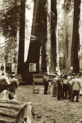 Photograph - In The Redwoods, Bohemian Club,  August 1955 by California Views Archives Mr Pat Hathaway Archives