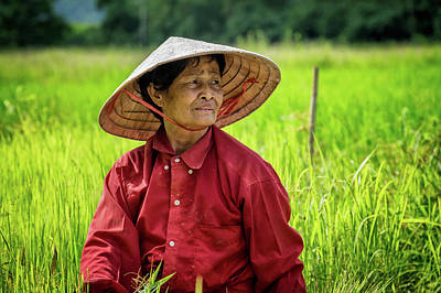 Lee Craker Royalty-Free and Rights-Managed Images - In the Rice Fields by Lee Craker