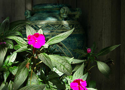 Still Life Photograph - In The Shadows by Heather S Huston
