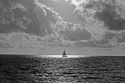 Photograph - In The Spotlight. Sailboat Sailing In Naples Fl Black And White by Toby McGuire