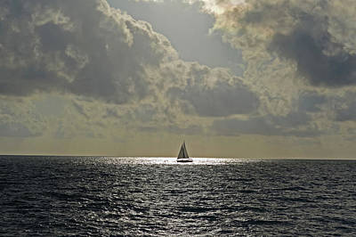 Photograph - In The Spotlight. Sailboat Sailing In Naples Fl by Toby McGuire