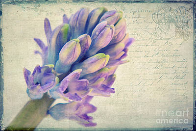 In The Spring Print by Angela Doelling AD DESIGN Photo and PhotoArt