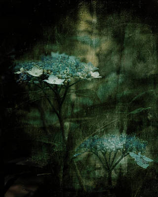In The Still Of The Night Art Print by Bonnie Bruno
