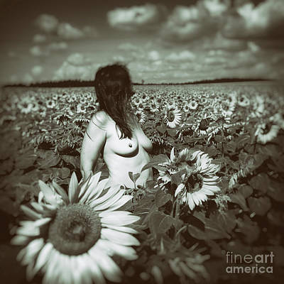 Photograph - In The Sunflower Field by Michal Boubin