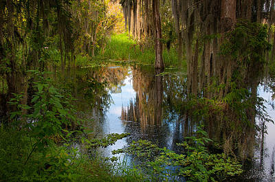 In The Swamp Print by Carolyn Dalessandro