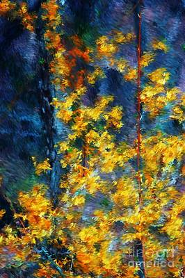 Impressionism Photos - In the woods again by David Lane