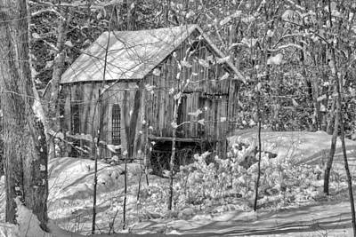 Farm Scene Photograph - In The Woods Bw by Bill Wakeley
