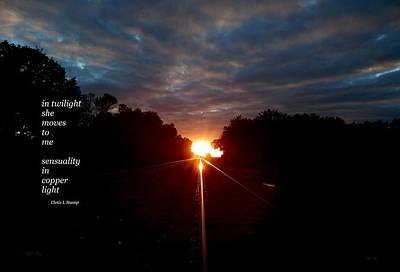 Photograph - In Twilight by Wild Thing