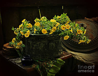 Photograph - In Yellow  by Binka Kirova