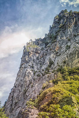 Photograph - In Yosemite Valley Looking Up by John M Bailey