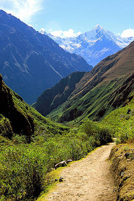 Photograph - Inca Trail And Mt. Veronica by Alan Lenk