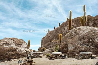 Background Photograph - Incahuasi Island, Salar De Uyuni, Bolivia by Dani Prints and Images