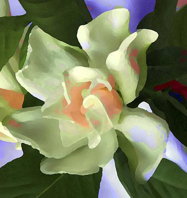 Visual Illusion Photograph - Incendle Melange by Robert OP Parrish