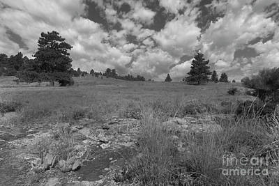 Photograph - Incoming Clouds by Steve Triplett