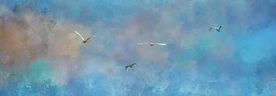 Photograph - Incoming Egrets by Jai Johnson