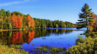 New England Fall Photograph - Incredible by Chad Dutson