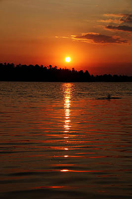 Photograph - Incredible Orange Sunrise by Debbie Oppermann
