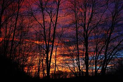 Photograph - Incredible Sky Color by Kathryn Meyer