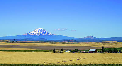 Summer Photograph - Incredible View by Ric Schafer