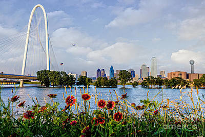 Photograph - Indian Blanket Overlooking Dallas by Tamyra Ayles