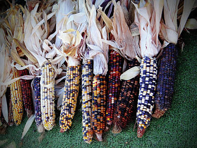 Photograph - Indian Corn by Jamie Johnson