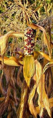 Digital Art - Indian Corn by Ric Darrell