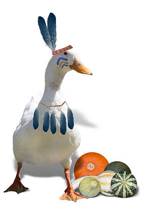 Pumpkin Mixed Media - Indian Duck by Gravityx9 Designs
