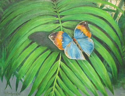 Painting - Indian Head Butterfly by Oz Freedgood