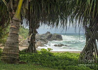 Photograph - Indian Ocean In Sri Lanka by Patricia Hofmeester
