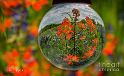 Photograph - Indian Paintbrush And Bluebonnets by John Roberts