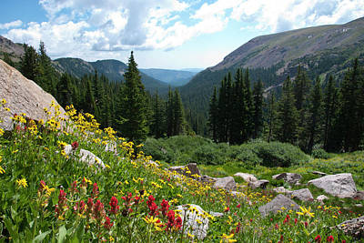 Photograph - Indian Peaks Summer View by Cascade Colors
