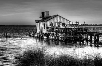 Photograph - Indian River Old Fish House by Carol Montoya