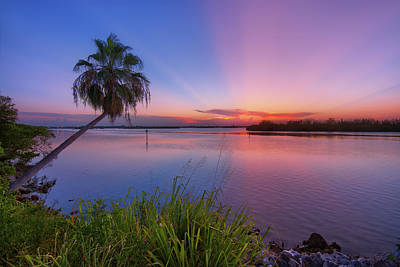 Photograph - Indian River State Park Bursting Sunset by Justin Kelefas