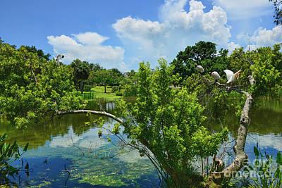 Photograph - Indian Riverside Park by Olga Hamilton