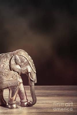 Hammer Photograph - Indian Silver Elephant by Amanda Elwell