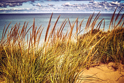 Photograph - Indiana Dunes National Lakeshore by Roger Passman