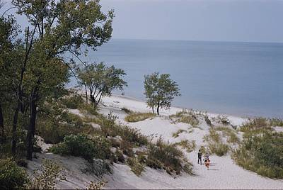 Indiana Dunes Photograph - Indiana Dunes State Park Provides by B. Anthony Stewart