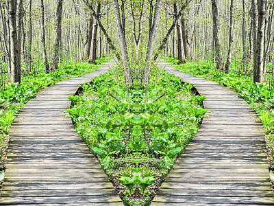 Photograph - Indiana Great Marsh Boardwalk Mirror by Kyle Hanson