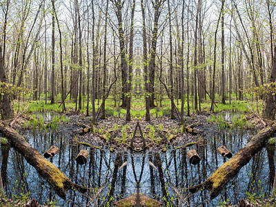 Photograph - Indiana Great Marsh Mirror by Kyle Hanson