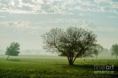Photograph - Indiana Morning by David Arment